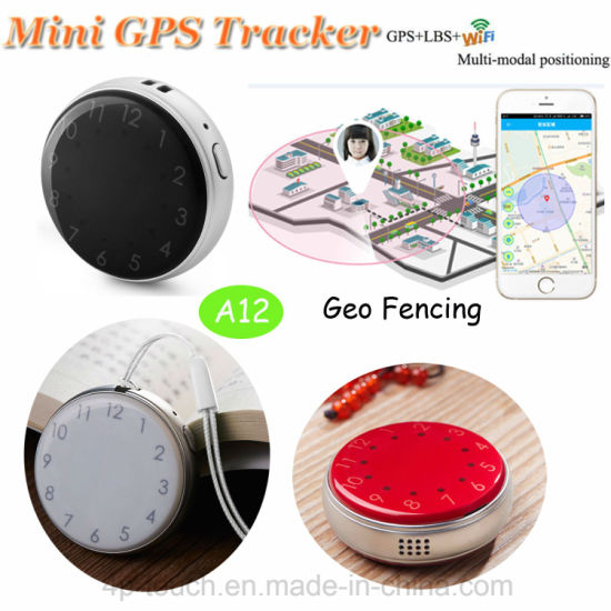 Accurate Portable Mini Parcel GPS Tracker with Time Display A12