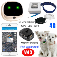 4G Lte GPS Tiny GPS Tracker with IP67 Waterproof V43